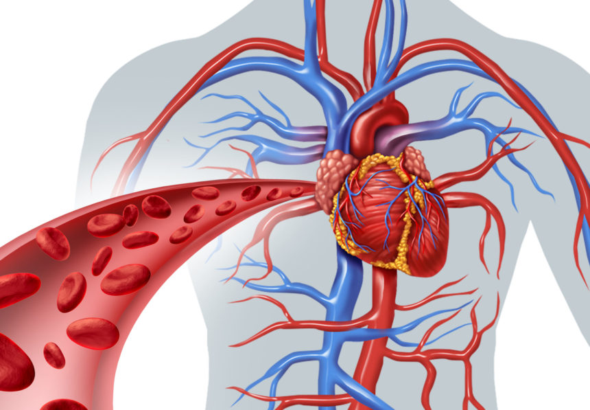 Ian Weisberg – Role of Cardiologists in Treating Heart Attacks